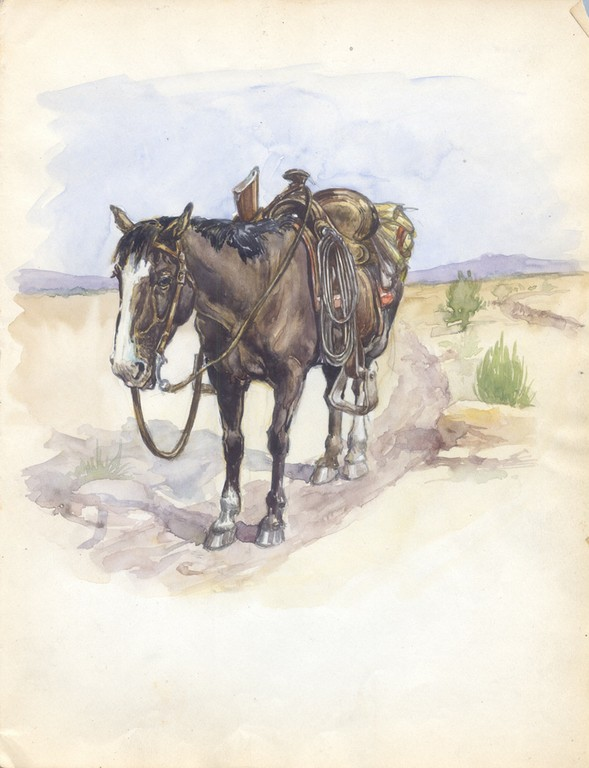 Detail from Donn P. Crane's sketchbook: a finely detailed horse and saddle.