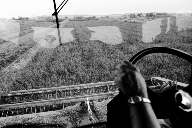Julia Ferguson drives a combine near the town of Cartersville, a former stop on the Milwaukee Railroad.