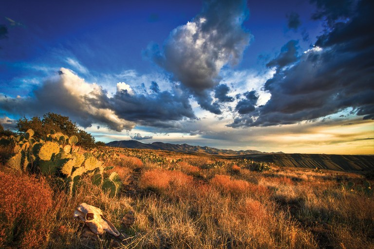 Agua Fria National Monument in Arizona is 70,900 acres of protected high mesa semi-desert grasslands and riparian forests, a forg