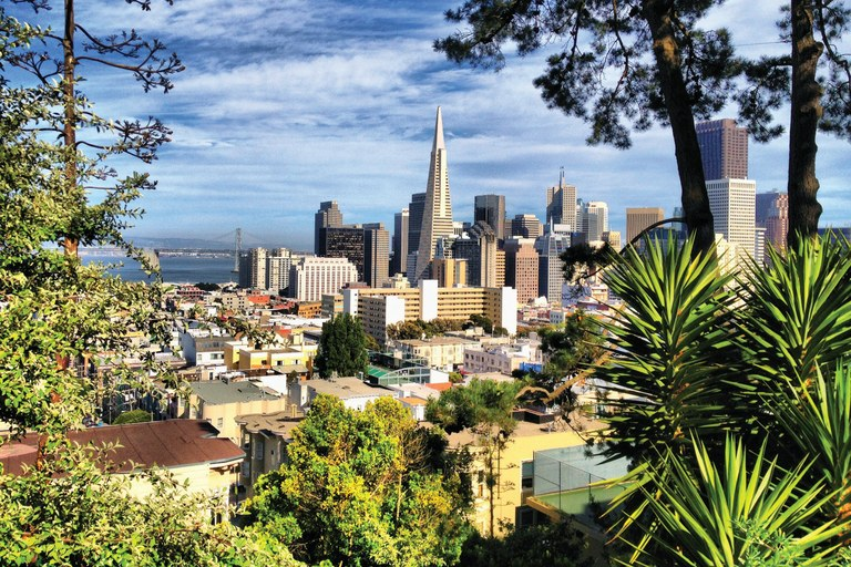 San Francisco framed by trees in the Russian Hill neighborhood.