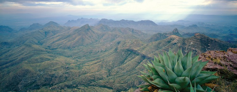 Big Bend National Park, where about 260 volunteers log about 50,000 hours annually.