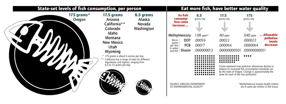 Fish-consumption assumptions