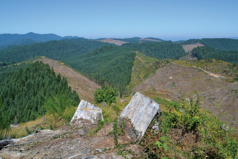 "The patchwork of clear-cuts on private land makes conservation on adjacent BLM parcels even more important in the O&C country, say environmentalists who've challenged recent ""ecological"" logging that includes partial clear-cuts."