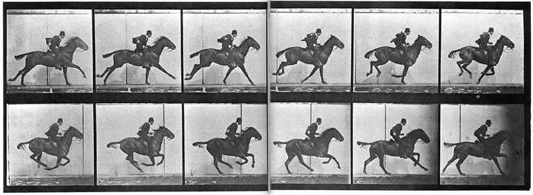 Using 12 cameras, Eadweard Muybridge took a series of photographs which showed an airborne galloping steed, its four feet suspended briefly above the earth.