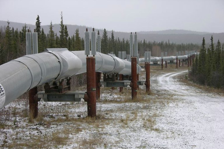 A section of the TransAlaska Pipeline System.