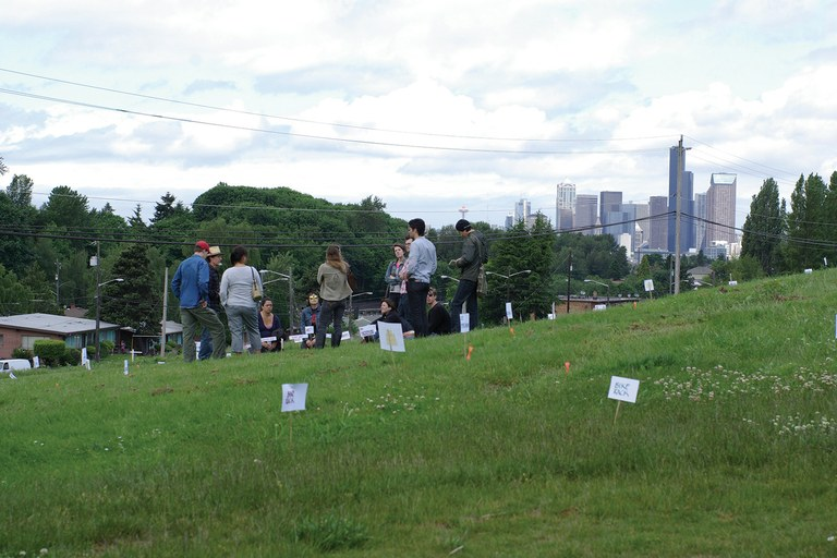Seattle's Beacon Food Forest in an early conceptual phase.