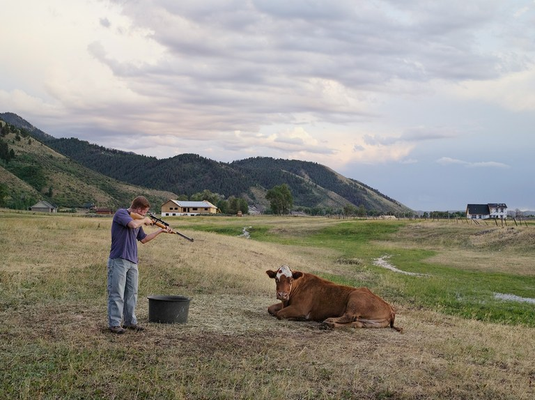 Adam Killing a Cow, Mortensen Family Farm, Afton, Wyoming 2010.