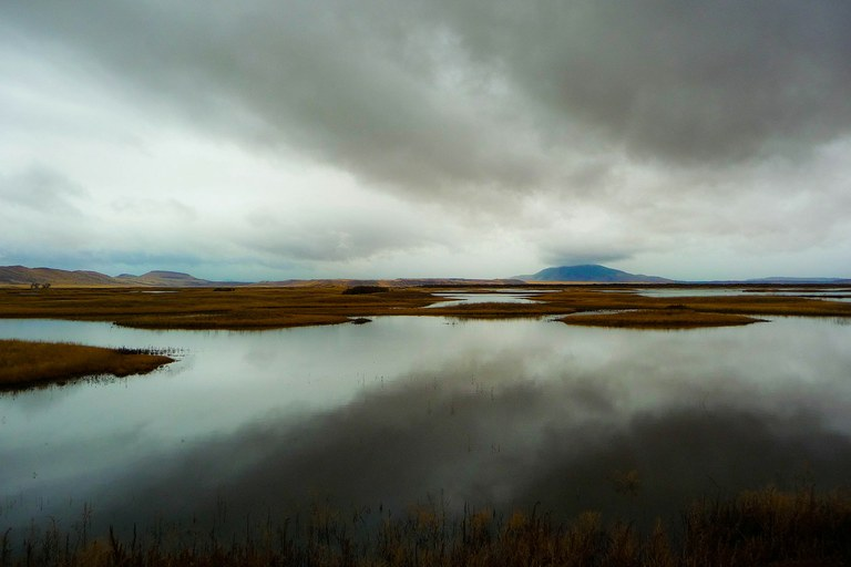 The Klamath Basin National Wildlife Refuge.