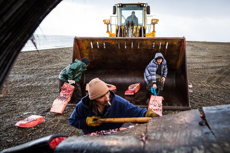 Alaska's Uncertain Food Future