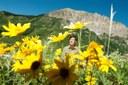 Zen and the art of wildflower science