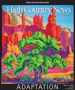 high country news essays Browse 15m+ essays discover great essay examples being able to vote for the leader of one's country is one of the foundations that our founding father.