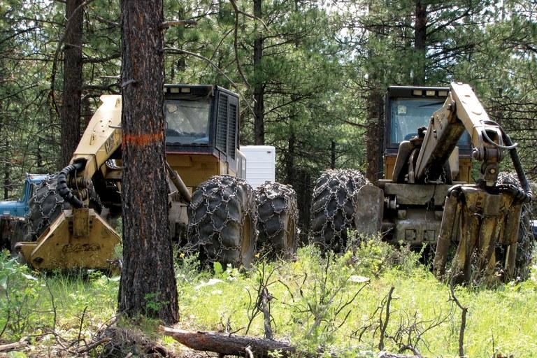 badbills-logging-jpg