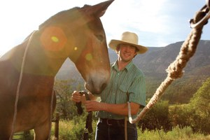 A young mule stringer helps keep a dying profession alive