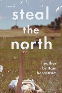 book-stealthenorth-cover-jpg