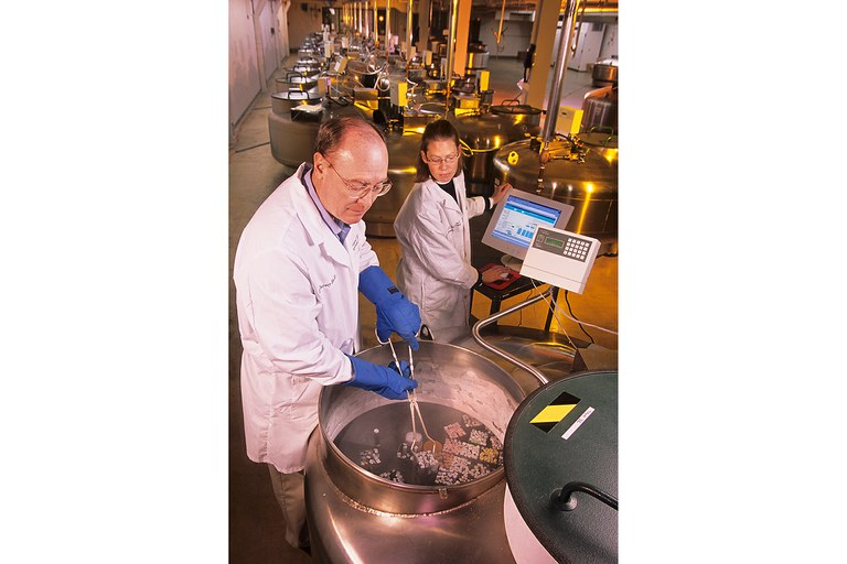National Animal Germplasm Program coordinator Harvey Blackburn, left, and technician Ginny Schmit place germplasm samples into a liquid nitrogen tank for long-term storage.