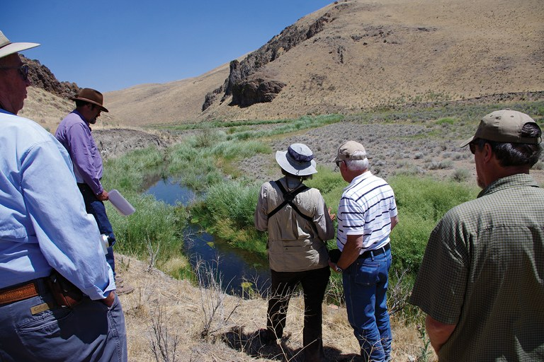 Mary O'Brien and Bill Hopkin, center-left and center-right, respectively, touring an allotment in Nevada where changes to the grazing regime helped restore a stream.