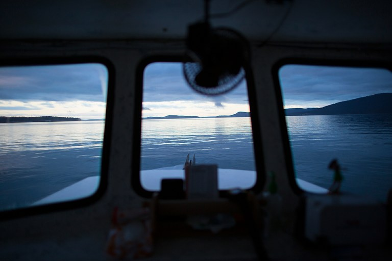 Dusk settles over the San Juan Islands off the Washington coast. U.S. officials are traveling to China in March, hoping to end the geoduck ban. Williams, however, couldn't wait: In February, he returned to work at an oil refinery.