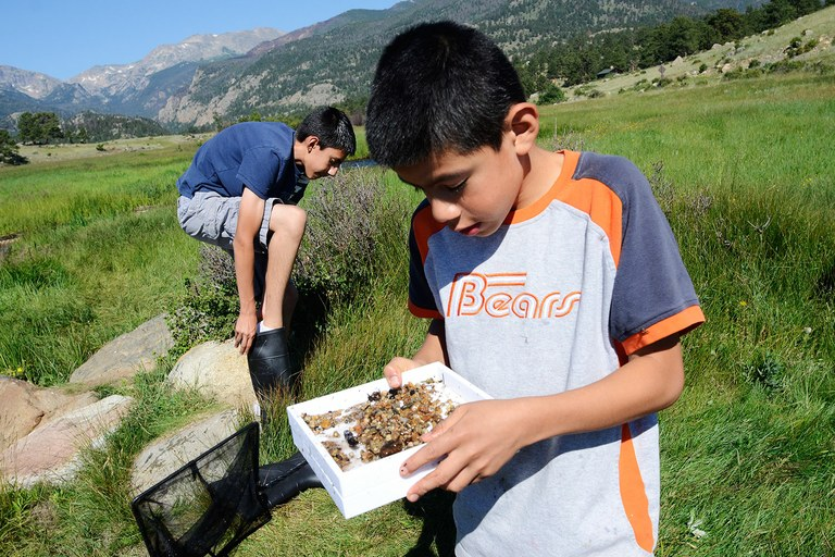 Brothers Eduardo, left, and Steven Mendoza search a stream for insects and fish eggs in Rocky Mountain National Park during a weekend trip with Camp Moreno.
