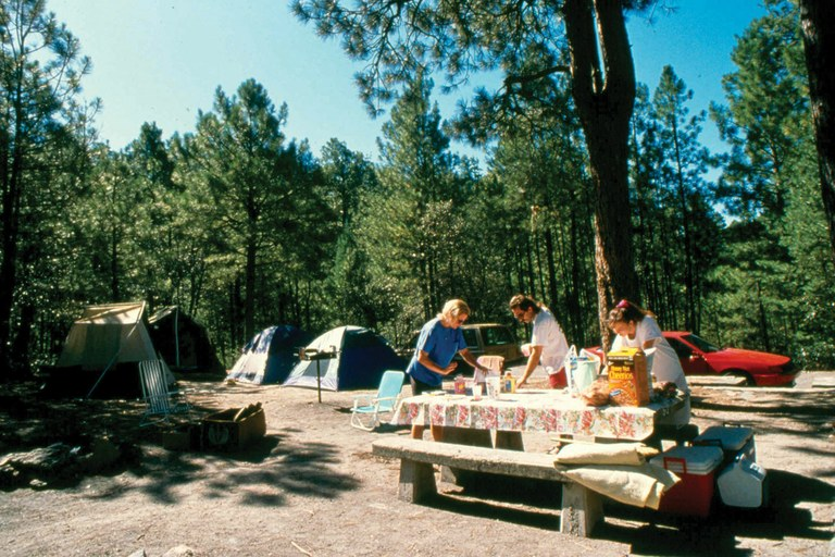 The campground at Arizona's Rose Canyon Lake, built on Forest Service land with taxpayer money, is now accessible only to those willing to pay a fee to the private company that manages the site.