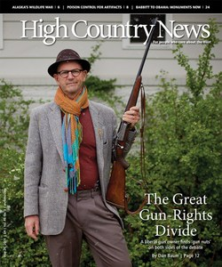 The Great Gun Rights Divide