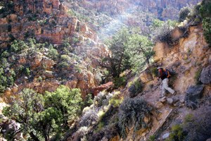 On death's doorstep in the Grand Canyon