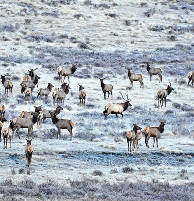 The Latest: Park Service takes the reins at Valles Caldera