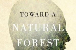 The U.S. Forest Service: an agency adrift
