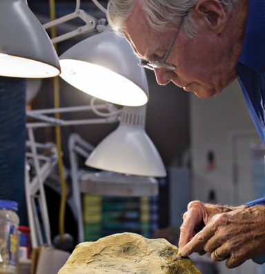 New clues to the past in Nevada's desert fossils