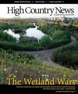 The Wetland Wars