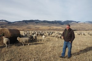 Montana rancher looks to the past to prepare for tomorrow's climate