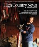 Salmon Power