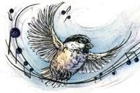 The Chickadee Symphony
