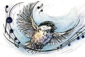 The Chickadee Symphony