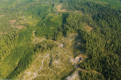 An end to old-growth logging in Alaska's Tongass?