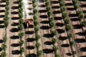 A dry future weighs heavy on California agriculture