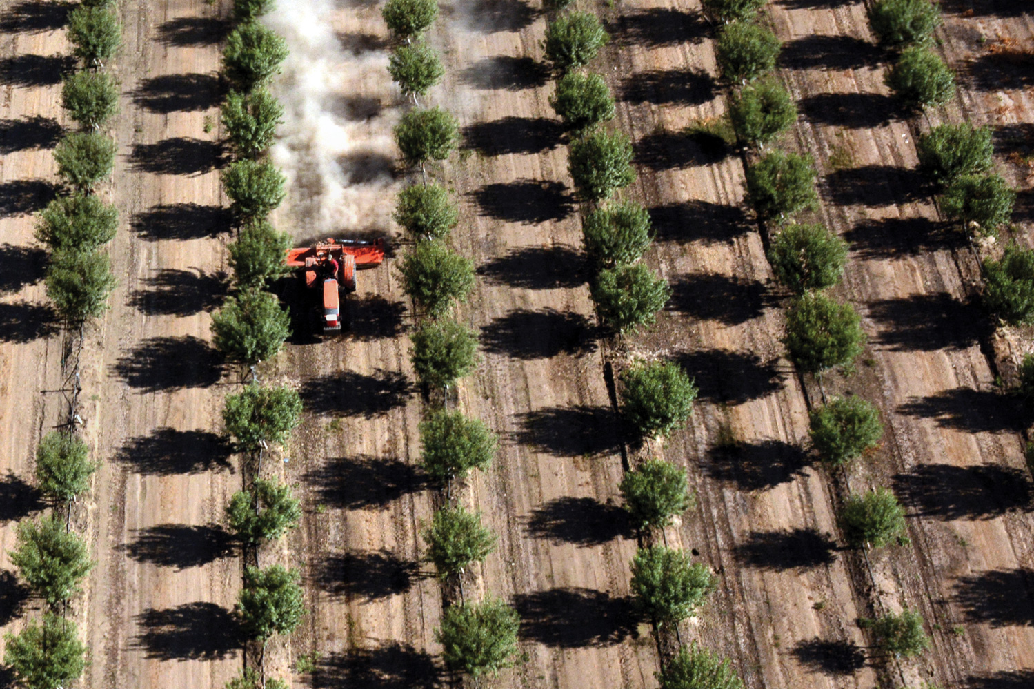 A dry future weighs heavy on California agriculture (Growing heavy