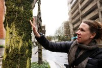 Inside the moss mystery: How the organisms helped reveal Portland's pollution