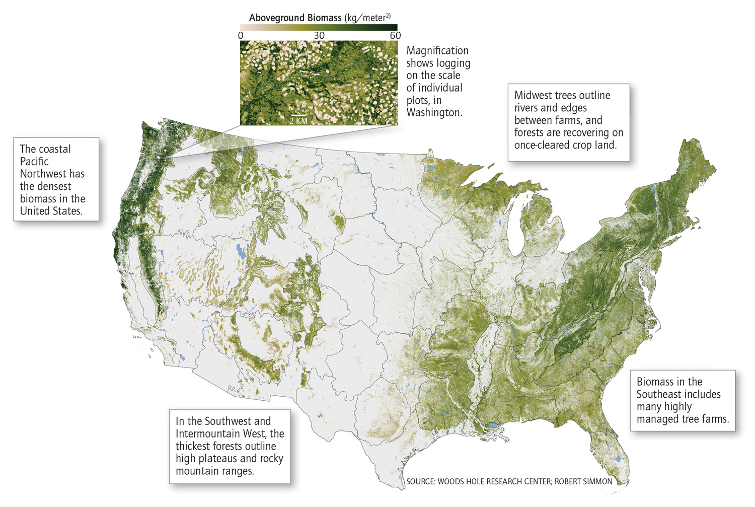 What The Wests Trees Tell Us What The Wests Trees Tell Us - Us forest biomass map
