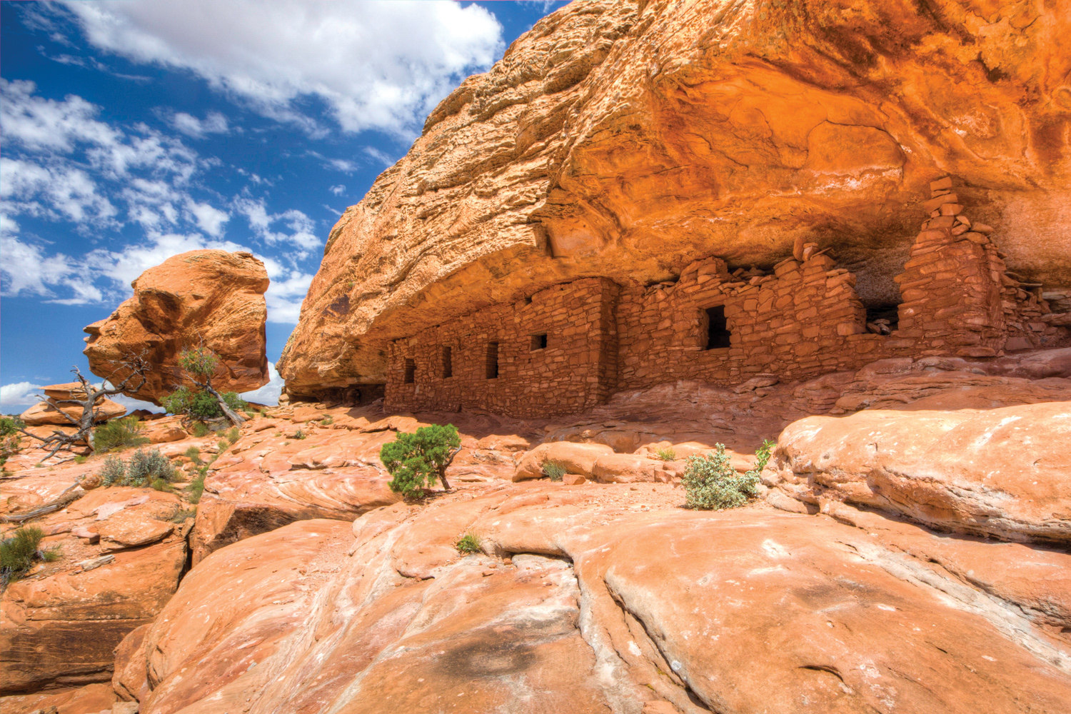 The Cedar Mesa Citadel Ruins are one of thousands of ...