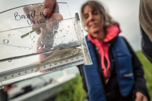 A community copes with record low salmon returns