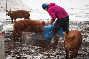 Farming in Alaska is increasingly possible