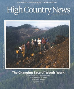 The Changing Face of Woods Work