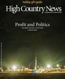 Profit and Politics