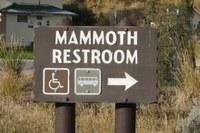 Macho moose; thousand-dollar bobcat; lost in Dark Canyon