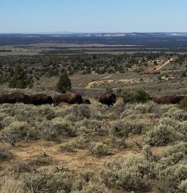 In Utah, public access to state lands comes at a cost