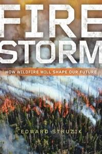 book-firestorm-StruzikCover.jpg