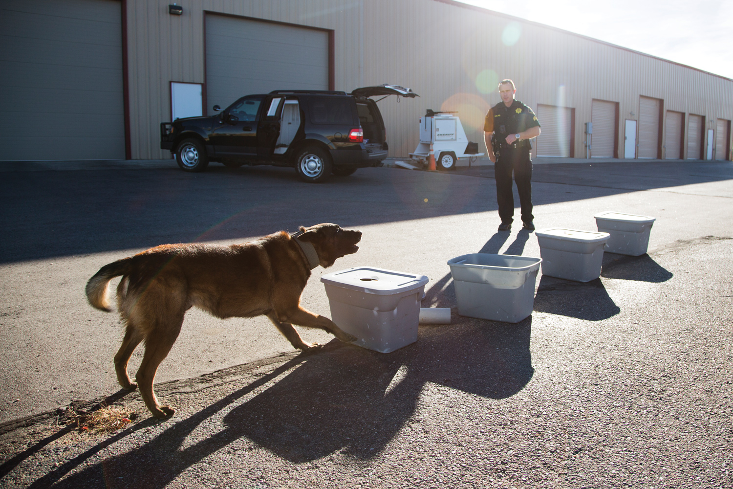 Sgt. Courtland Folks of the Moffat County Sheriff's Office places synthetic narcotics in bins as part of a training for his dog, Kilo. (Brooke Warren/High Country News)