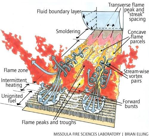 Inside The Firestorm  Firestorm   U2014 High Country News