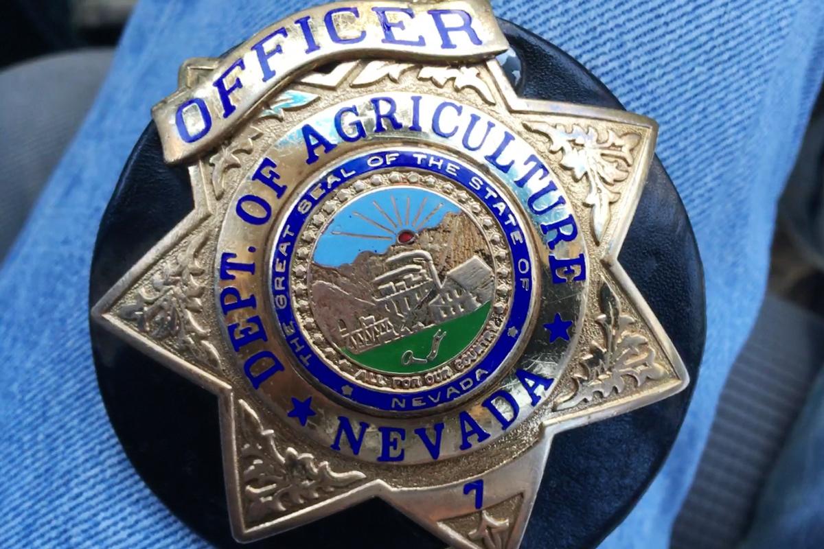 Meet Nevada's cow cops