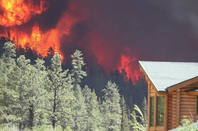 Timber is Oregon's biggest carbon polluter